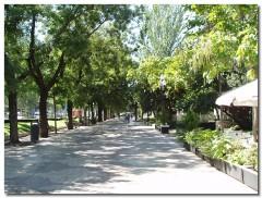 Paseo de Recoletos, la alameda más vieja de Madrid