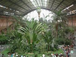 Los Jardines de Atocha, una selva tropical dentro de Madrid